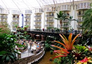Looking up at the Gaylord Opryland Hotel rooms from one of the complex's atriums. -- Photo by Pat Bean
