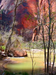 Zion, River Walk 2