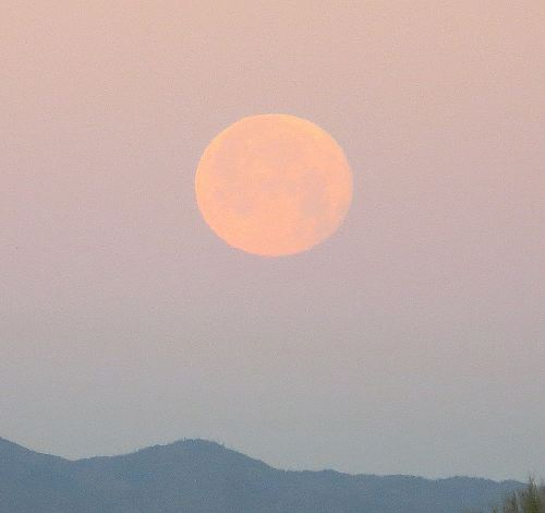 Even though it was in the early hours of the morning when I got to sleep last night, I was up in time to take this picture of the moon over Tucson this morning which by the way is not photo-shopped. It's pure Mother Nature at her best.   -- Photo by Pat Bean