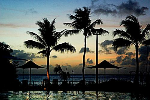 You can still enjoy a beautiful sunset on Guam, but the tropicl island is almost devoid of birds. -- Wikipedia photo