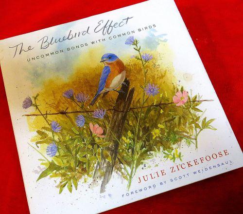 """""""The Bluebird Effect by Julie Zickefoose"""