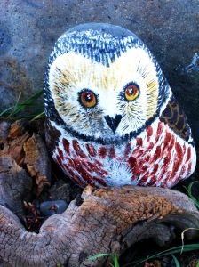 My RV was parked by the Blanco River pictured above at one of my favorite RV parks. I loved the river but I also loved the little details around the park, like this charming owl painted on a rock that gave the campground character. Photo by Pat Bean