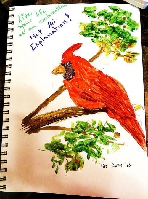 Life as an exclamation is how I saw this northern cardinal.