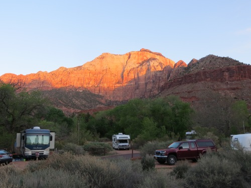 When I took my canine traveling companion on her morning walk at Zion National Park, the view across from my RV glowed. -- Photo by Pat Bean
