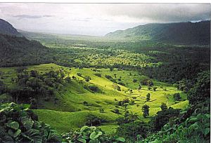 And a Samoan landscape that Margaret Mead saw but I never did. -- Wikipedia photo