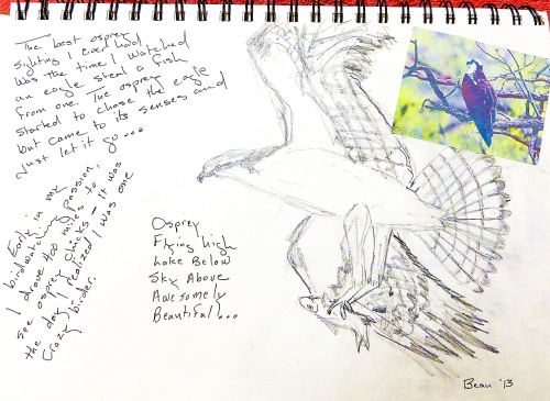 A recent page from one of my art journals. As I sketched the osprey, I thought about all the times I had seen one, and good memories flooded my little gray cells. Illustration by Pat Bean