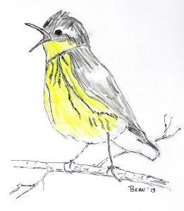 I love it when I wake up to the twitter of birds, even if I've forgotten the great idea I had the night before.  -- Pat Bean sketch. .