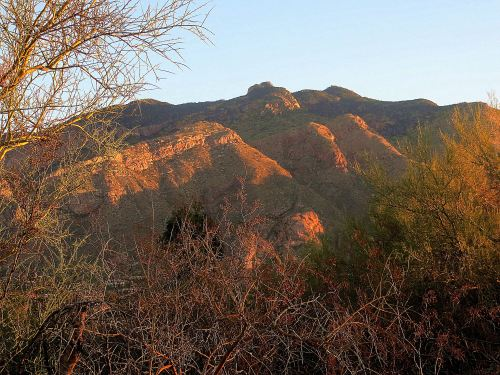 On the opposite side of the landscape from the sunrise, Mount Lemmon was set afire by the sun's first rays. --Photo by Pat Bean