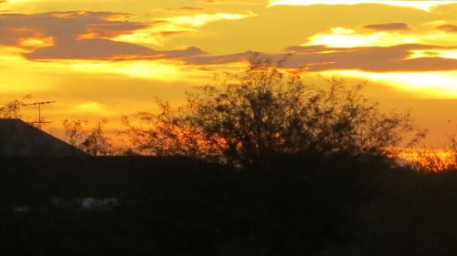 Tucson sunset -- Photo by Pat Bean