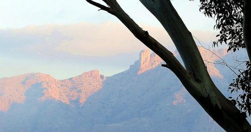 Morning comes to Tucson's Catalina Mountains. -- Photo by Pat Bean