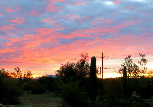 This glorious desert sunset welcomed me home to Tucson