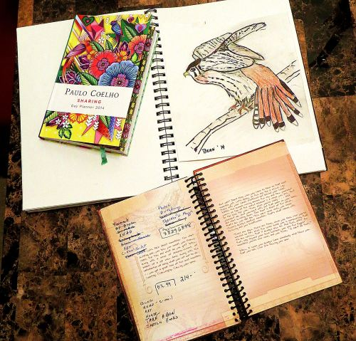 Yesterday's use of paper included adding a kestrel painting to my sketchbook, writing down dates to remember in my diary calendar, which is full of paintings and quotes, and writing in my to-do journal, which includes a hodgepodge of notes and ideas to myself. -- Photo by Pat Bean