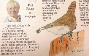 Among my own writings about my Grand Canyon trip was one about the canyon wren, which often serenaded us during our early mornings on the river.