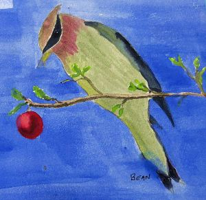 Art of the Day: Cedar Waxwing