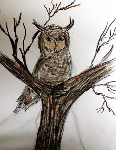 And this is one of my great horned owl doodles. I did it from memory after the Gandolf incident.