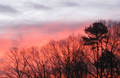 There is no better way to start a day than by watching the sun rise up over the horizon. -- Photo by Pat Bean