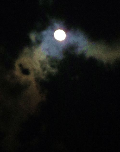 My writing often starts out like this night's sky. While I'm kind of moonstruck, heading toward the light, the magical way to get there is light years away. -- Photo by Pat Bean