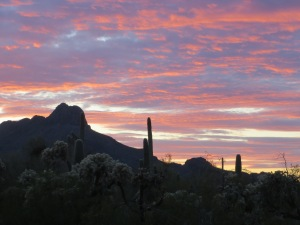 And this is the Arizona landscape where I live now, and which does not participate in Daylight Saving Time. -- Photo by Pat Bean
