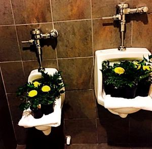 And someone was kind enough to turn the urinals into unique vases.