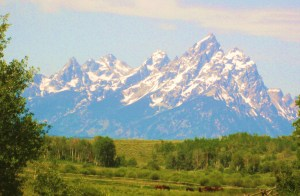 But there's no mistaking the Grand Teton as a hill. -- Photo by Pat Bean