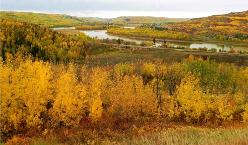 An autumn scene along the Peace River, not exactly the view I saw during my trip but I certainly saw river-side landscapes that were just as awesome. -- Wikimedia photo