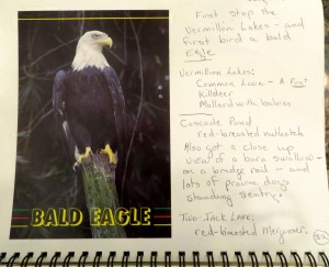 Page from my jouranl. noting my bald eagle sighting. .