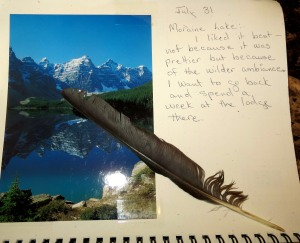 I added the feather of a Clark's nutcracker to one of my journal pages.