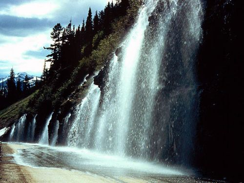 The Weeping Wall on the Going to the Sun Road. -- Wikimedia Photo