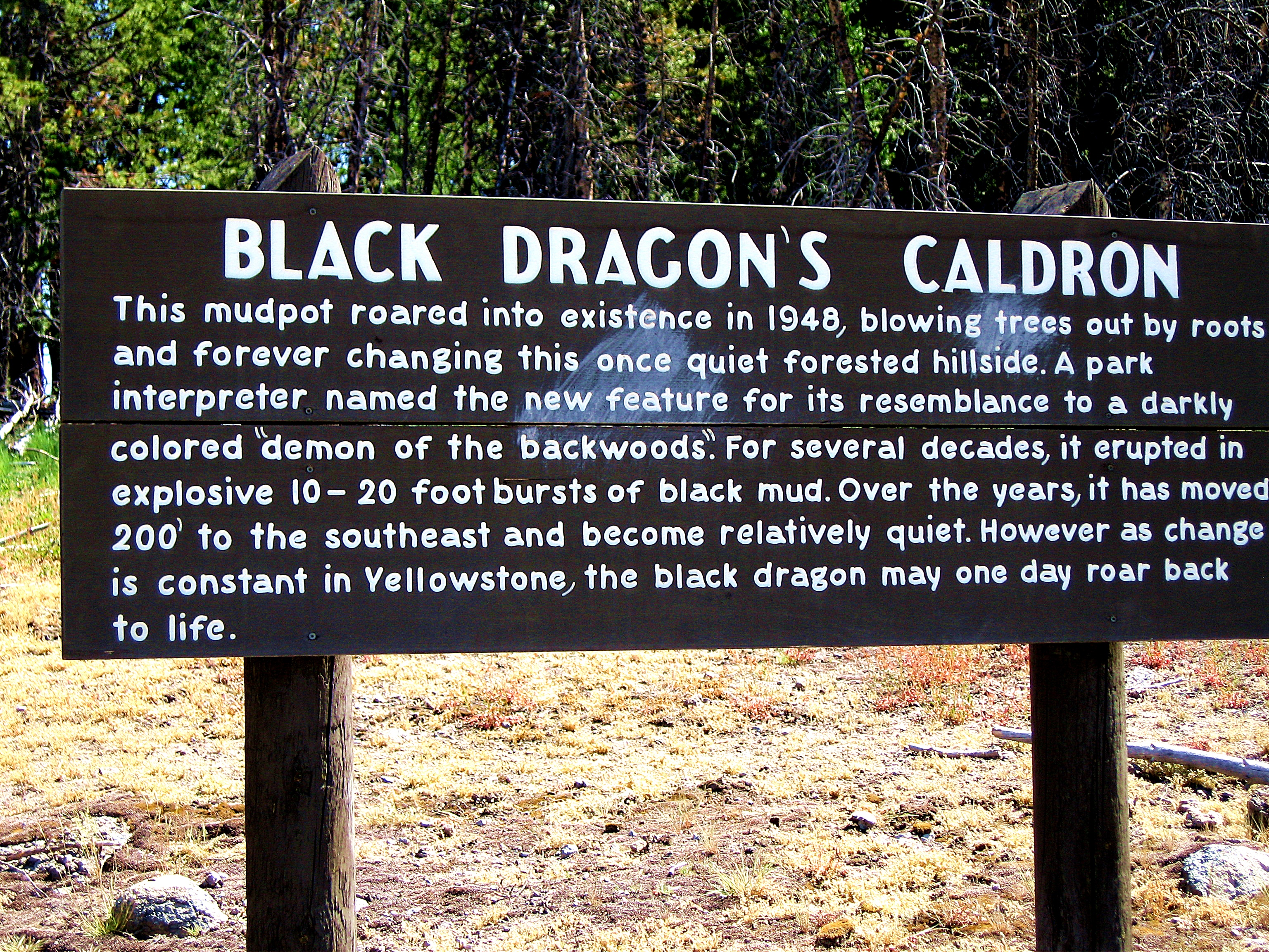 black dragon dating blog Posted by joey - today we're proud to officially announce the black dragon named after a geologic layer prominent in areas of utah, the  blog contact buy.